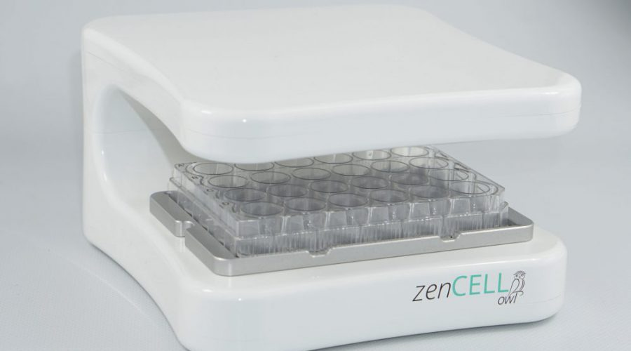 zenCELL owl - live cell imaging